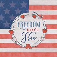 Freedom Isn't Free Fine Art Print