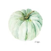 Mint Pumpkin Fine Art Print