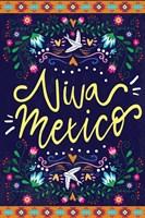 Viva Mexico Fine Art Print