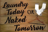 Laundry Today or Naked Tomorrow Fine Art Print
