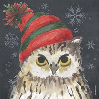 Christmas Owl Fine Art Print