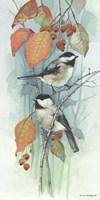 New Chickadee I Fine Art Print