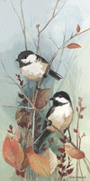 New Chickadee II Fine Art Print
