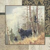 Black Bears with Border Fine Art Print