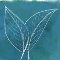 Tropical IV Fine Art Print