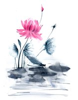 Pink Flower and a Lily Pad Fine Art Print