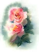 Peach Rose Fine Art Print