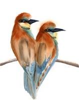 Black Beaks Fine Art Print