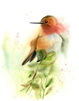 Pretty Bird Fine Art Print