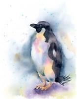 Penguin I Fine Art Print