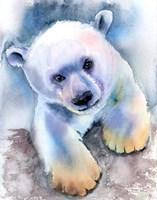 Polar Bear Fine Art Print