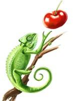 Chameleon Fine Art Print