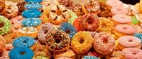 Donut Forget Me Fine Art Print