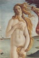 Birth of Venus, Venus Fine Art Print