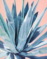 Agave with Coral Fine Art Print