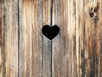 Heart in Wood Fine Art Print