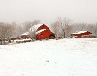Union Co. Barn & Snow Fine Art Print