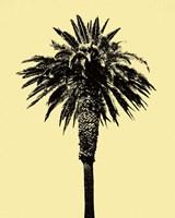 Palm Tree 1996 (Yellow) Fine Art Print