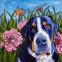 Dog and Dragonflies Fine Art Print