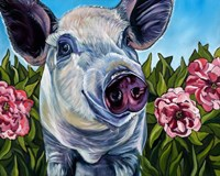 Pigs and Peonies Fine Art Print