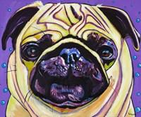 Purple Pug Fine Art Print