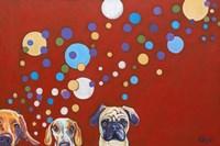 When Dogs Drink Fine Art Print