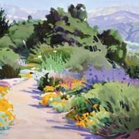 Path through the Poppies Fine Art Print