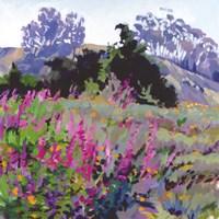Spring Haze, Eucalyptus on the Ridge Fine Art Print
