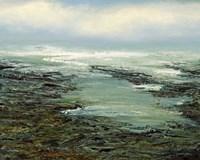 Shallow Reef Fine Art Print