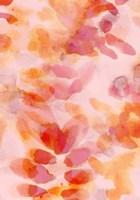 Bloom Rose Fine Art Print