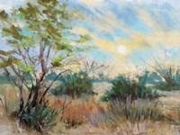 Texas Sunrise Fine Art Print