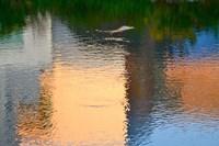 Reflection on the Iowa River No. 1 Fine Art Print