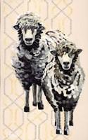 Woolly Two Fine Art Print