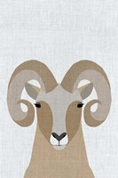 Bighorn Sheep Fine Art Print