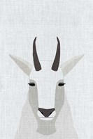 Mountain Goat Fine Art Print