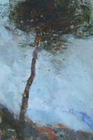 Lone Moorland Pine Fine Art Print