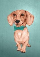 The Wiener Dog Fine Art Print