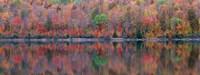 Upson Lake Reflection Fine Art Print