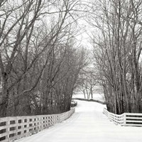 Country Lane in Winter Fine Art Print
