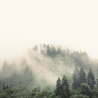 Smoky Mountains Fine Art Print
