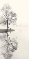 Tranquil Morning Fine Art Print