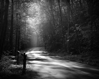 Tremont Road, Smoky Mountains Fine Art Print