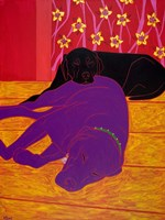 Let Sleeping Dogs Lie Fine Art Print