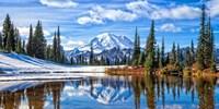 Mt. Rainier Vista Fine Art Print