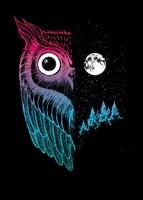 Night Owl Fine Art Print