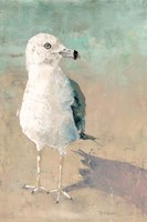 Beach Bird Fine Art Print