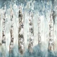Winter Aspen Fog Fine Art Print