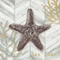 Gray Gold Chevron Star Fish Fine Art Print