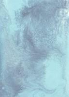 Arctic Brilliancy I Framed Print