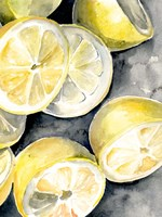Lemon Slices II Fine Art Print